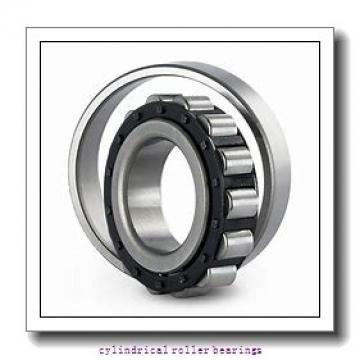 3.39 Inch | 86.103 Millimeter x 3.937 Inch | 100 Millimeter x 0.984 Inch | 25 Millimeter  LINK BELT M1309CHW989  Cylindrical Roller Bearings