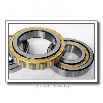 1.337 Inch | 33.972 Millimeter x 2.441 Inch | 62 Millimeter x 1 Inch | 25.4 Millimeter  LINK BELT M5305TV  Cylindrical Roller Bearings