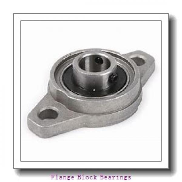 AMI BNFL5-16MZ2CB  Flange Block Bearings #1 image