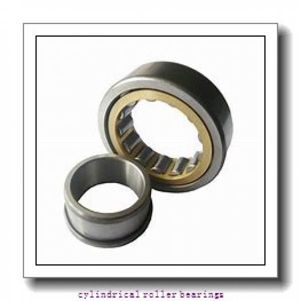 4.724 Inch | 120 Millimeter x 8.465 Inch | 215 Millimeter x 1.575 Inch | 40 Millimeter  LINK BELT MU1224UV  Cylindrical Roller Bearings #1 image