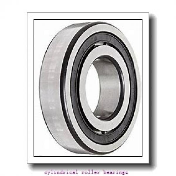 1.969 Inch | 50 Millimeter x 4.331 Inch | 110 Millimeter x 1.063 Inch | 27 Millimeter  LINK BELT MU1310UV  Cylindrical Roller Bearings #1 image