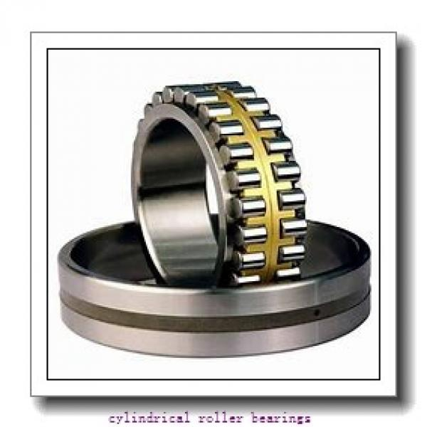1.181 Inch | 30 Millimeter x 2.835 Inch | 72 Millimeter x 0.748 Inch | 19 Millimeter  LINK BELT MU1306UV  Cylindrical Roller Bearings #1 image