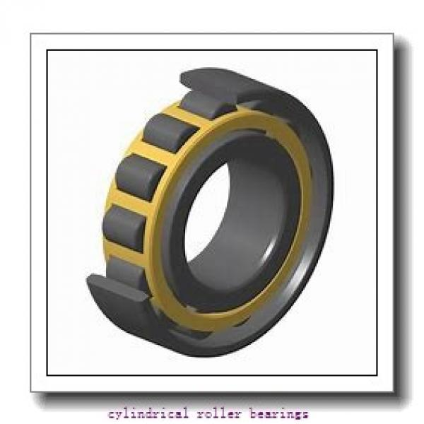 2.165 Inch | 55 Millimeter x 3.937 Inch | 100 Millimeter x 0.827 Inch | 21 Millimeter  LINK BELT MU1211UV  Cylindrical Roller Bearings #1 image