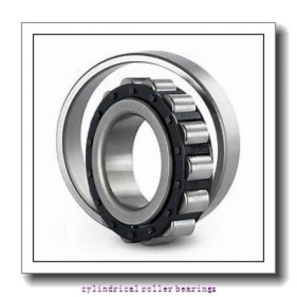 3.39 Inch | 86.103 Millimeter x 3.939 Inch | 100.046 Millimeter x 0.984 Inch | 25 Millimeter  LINK BELT M1309CAH  Cylindrical Roller Bearings #2 image