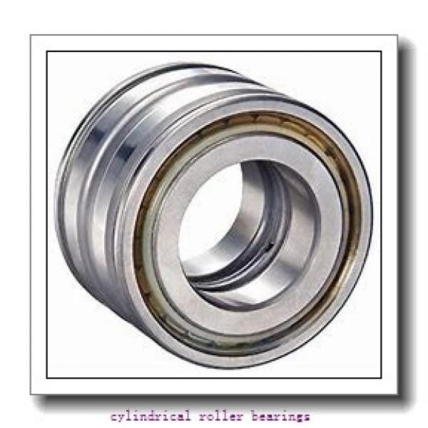 4.134 Inch | 105 Millimeter x 7.48 Inch | 190 Millimeter x 1.417 Inch | 36 Millimeter  LINK BELT MU1221UM  Cylindrical Roller Bearings #1 image